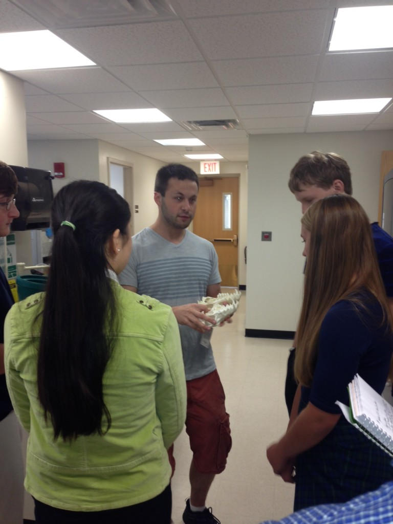 Science ambassador, Charlie Feigin, shows students a model of an animal skull.  September 2013
